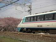 Sakuratrain1s